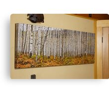 Aspen And Ferns (A 60 x 20 canvas print galley wrapped) Canvas Print