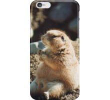 Munching Prairie Dog iPhone Case/Skin