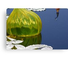 Chihuly Floater 5 Canvas Print