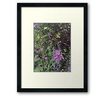 Engrained Framed Print