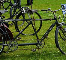 BIcycle made for two.... Devon UK by lynn carter