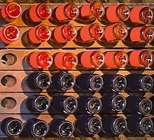 Wine bottles - Rose & Red Wine by Bruno Beach