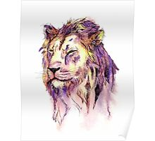 Watercolor and Ink Lion Poster