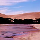The Pink Lake and Sand Dunes at Port Le Hunt by myraj