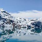 Rocky ciiffs- Glacier Bay  by DPalmer