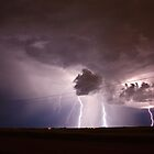 Thunder Bolt and Lightning Very Very Frightening by Don Arsenault