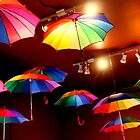 The Rainbow Party Lights by Michael May