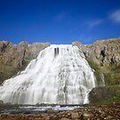 ICELAND XXI by Debbie Ashe