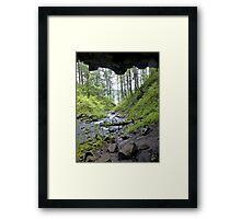 verdant Framed Print