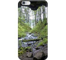 verdant iPhone Case/Skin