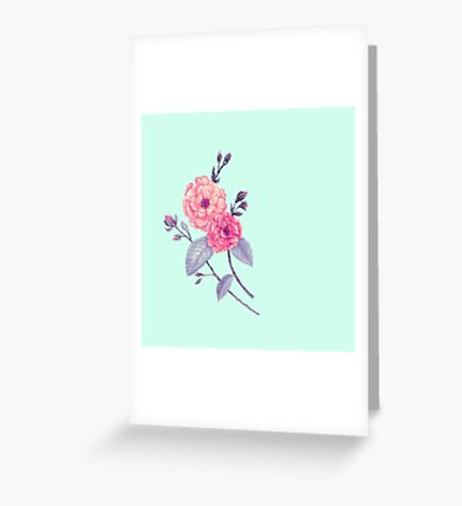 Rose, Soft Peach on Mint Greeting Card
