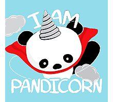Funny Panda Pandicorn Photographic Print