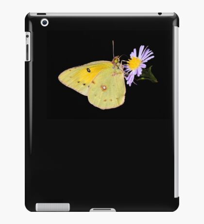 Orange Sulphur Butterfly on Aster iPad Case/Skin