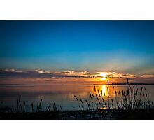 Sunset Reeds, North Shore Port Lincoln - South Australia Photographic Print