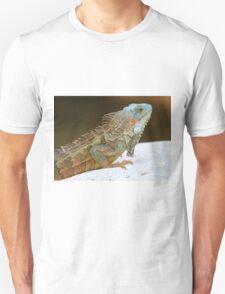 Blue head iguana Unisex T-Shirt