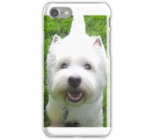 With love from the dog iPhone Case/Skin