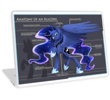 Anatomy of an Alicorn Laptop Skin