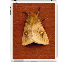 72316 moth iPad Case/Skin