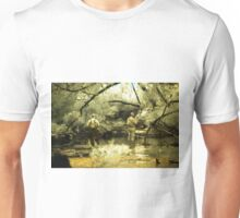 'Where are those fish', Donelly River, Western Australia Unisex T-Shirt