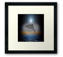 Dolphin Moon Framed Print