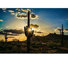 Desert Glory  Photographic Print