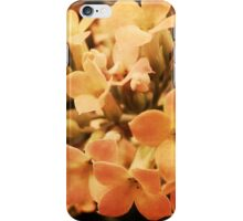 Yellow Kalanchoe Blossom iPhone Case/Skin