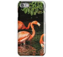 Pool Party iPhone Case/Skin