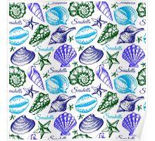 Seashell sketch pattern Poster