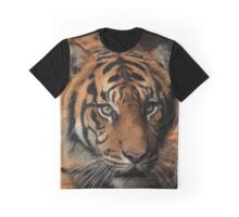Tiger Portrait - Melbourne Zoo Graphic T-Shirt