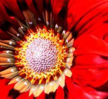 Red daisy Sticker