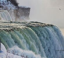 Niagara Falls in the Winter by Gilda Axelrod