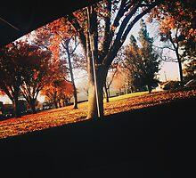 Fall  by Santamariaa