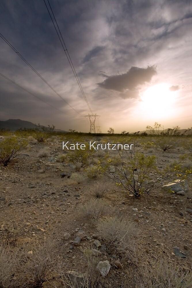 Burma Bull in the Mojave  by Katie Krutzner