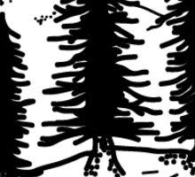 Tall Trees of Oregon Sticker