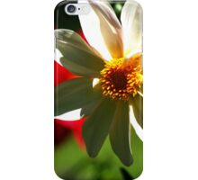 White Daffodil iPhone Case/Skin