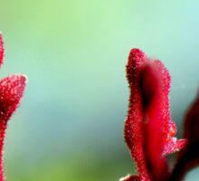 Red bloom Sticker
