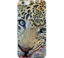 Marthly male enjoying a stolen meal!! iPhone Case/Skin