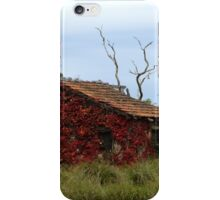 Red cottage (HDR) iPhone Case/Skin