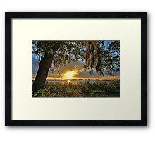 Southern Nights  Framed Print