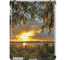 Southern Nights  iPad Case/Skin