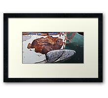 Tropical Rust Fish Framed Print