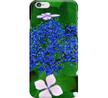 Blue blossom iPhone Case/Skin