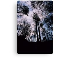 Forest Ceiling Canvas Print
