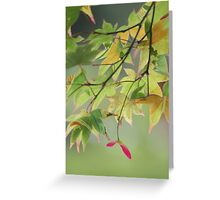 Patterned leaves Greeting Card