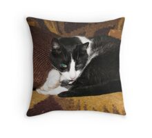 SinBad - pillow & tote Throw Pillow