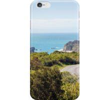 Queenstown Roadtrip iPhone Case/Skin