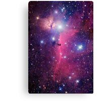 Purple Galaxy Canvas Print