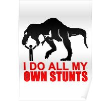 I do all my own stunts Poster