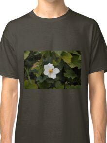 bee on wildflower Classic T-Shirt