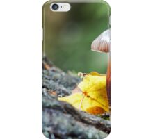 Toadstool in Natural woodland Setting iPhone Case/Skin